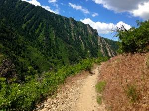 Beautiful views in Millcreek Canyon
