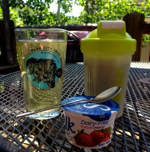 Post-run breakfast: Nuun drink, protein shake (Hammer Vegan Protein), and Silk dairy-free yogurt, yum!